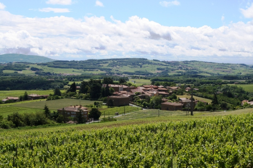 Villages and Vineyards