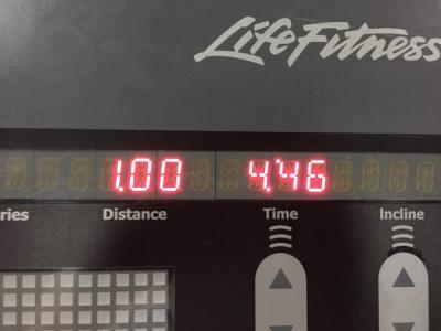 fitness446